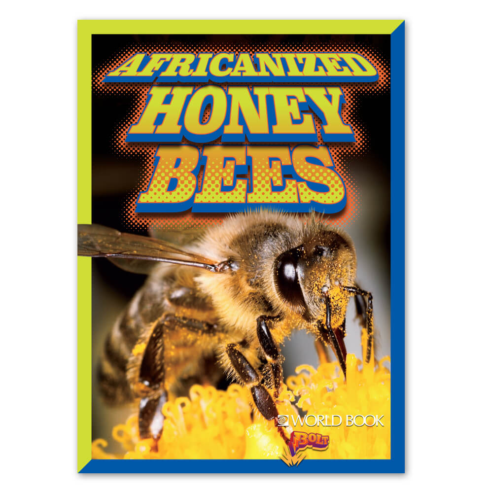 Africanized honeybees cover