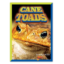 Cane Toads cover