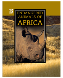 Endangered Animals of Africa endangered animals, middle school books, animal books, nonfiction