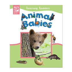 Animal Babies - Learning Ladders