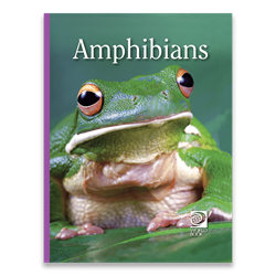 Amphibians Frogs, toads, amphibians, middle school, books, animals